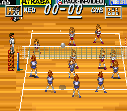 Multi Play Volleyball (Japan) In game screenshot